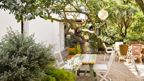 Terraza - Ecocentro Ibiza, Santa Gertrudis De Fruitera