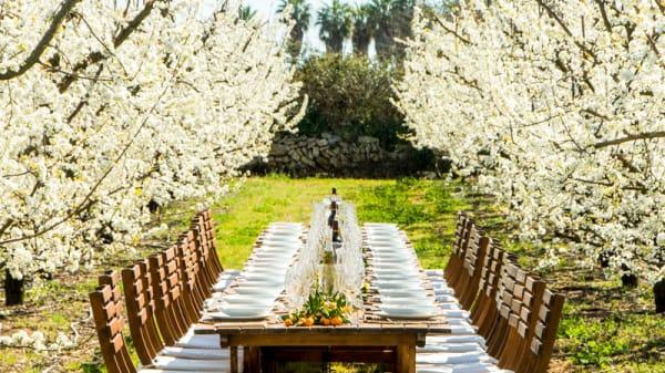 Mesa en primavera - Terragust, Manacor