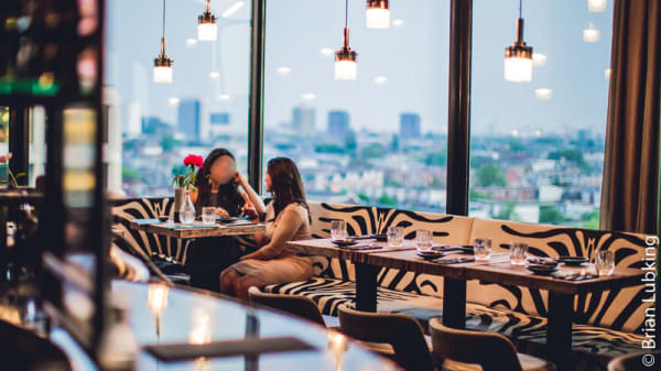 Rooftop Bar - The Suicide Club, Rotterdam