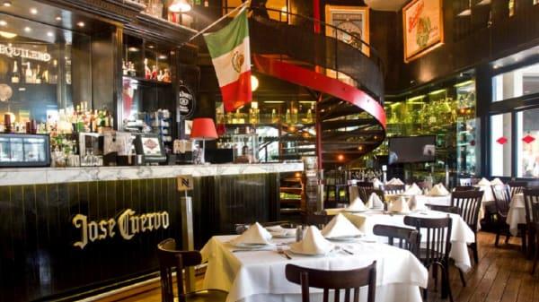 Los Canarios - Odeón Antara, Ciudad de México
