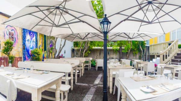 Terrace Indoor Garden - Santa Maria Funchal, Funchal