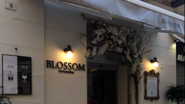 1 - Blossom Patagonia, Málaga
