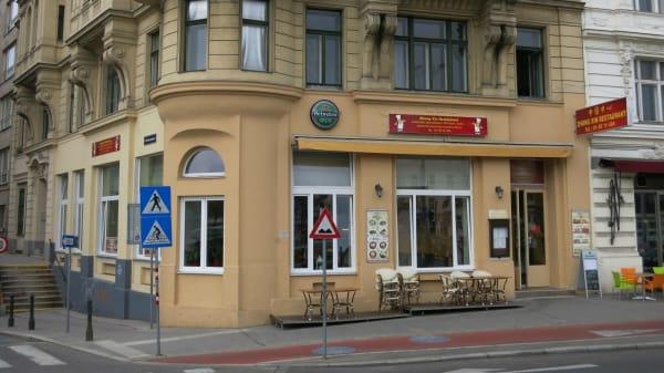 Fassade - Zhong Xin, Wien