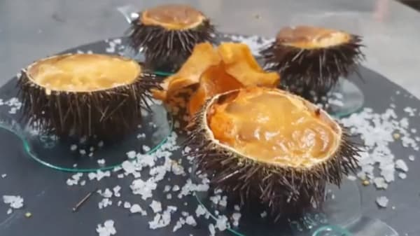 Sugerencia del chef - La Vella Lleteria (Gaucha), Premia De Mar