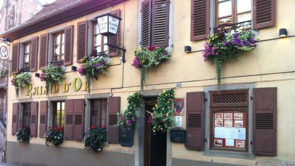 extérieur - Au Raisin d'or, Heiligenstein