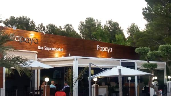 Entrada - Papaya Bar, El Casalot