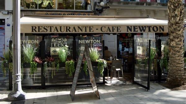 Terraza - Newton Gastro Bar, Elx
