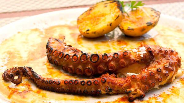 Sugerencia del chef - Asador Errekondo, Mañaria
