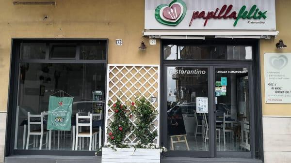 Papilla Felix, Salerno