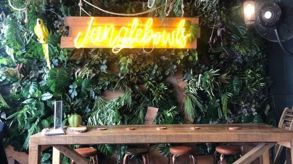 Vista del interior - Junglebowls, Eivissa