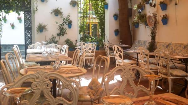 Nuestro patio córdobes - El Rincón de Carmen, Córdoba