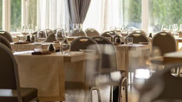Risorante Sicomoro  - Ristorante Sicomoro - Simon Hotel, Pomezia
