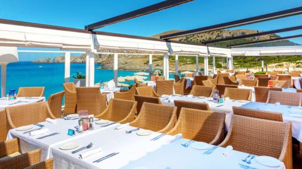 Terraza - La Terrazza Restaurant - VIVA Cala Mesquida Resort & Spa, Capdepera