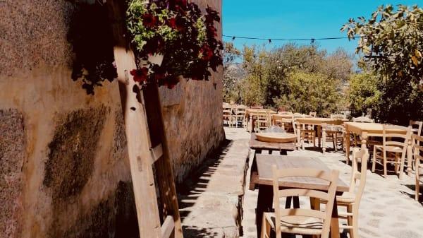 La Sasima a San Pantaleo - Menu, prezzi, immagini, recensioni e indirizzo  del ristorante