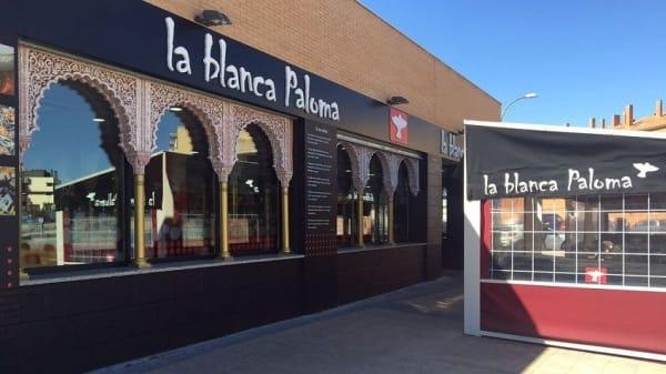 La Blanca Paloma Pinto, Pinto