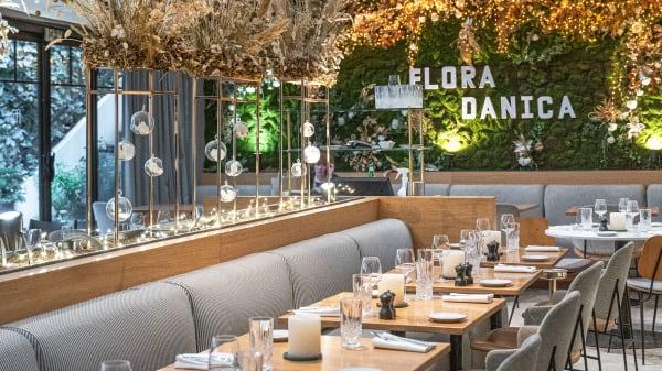 Vue de la salle - Flora Danica, Paris