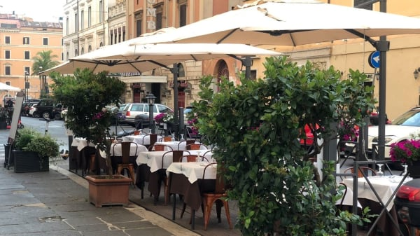 Alessio, Roma