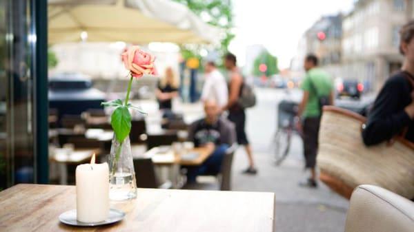 terrace - Cafe Katz, København