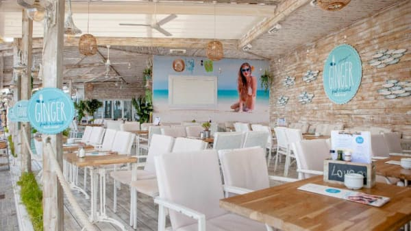 Vista sala - Ginger Beach, Palma de Mallorca