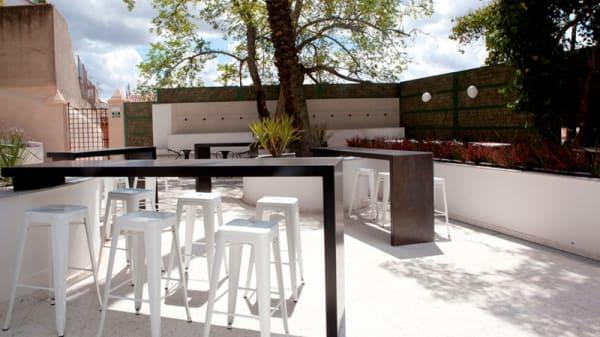 Terraza - Jardín Día - Mastropiero Gastrobar y Jardín, Cáceres