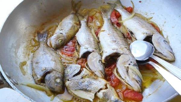 Suggerimento dello chef - VirgolaZero1, Civitanova Marche