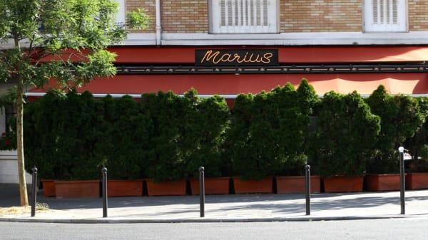 Marius, Paris