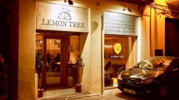 Entrada - Lemon Tree, Palma de Mallorca