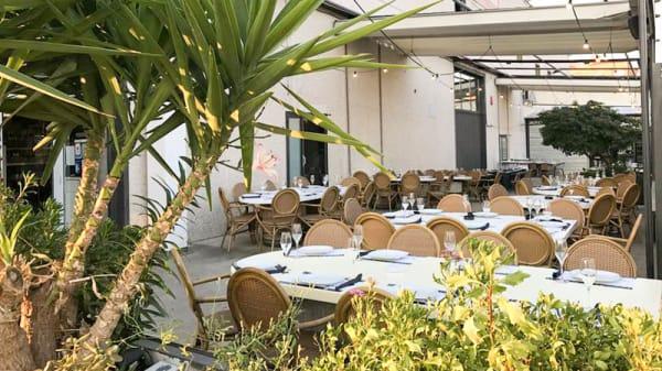 Terraza - Taverna Enovin, Ripollet