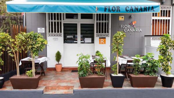 Vista terraza - Flor Canaria, Dragonal Bajo