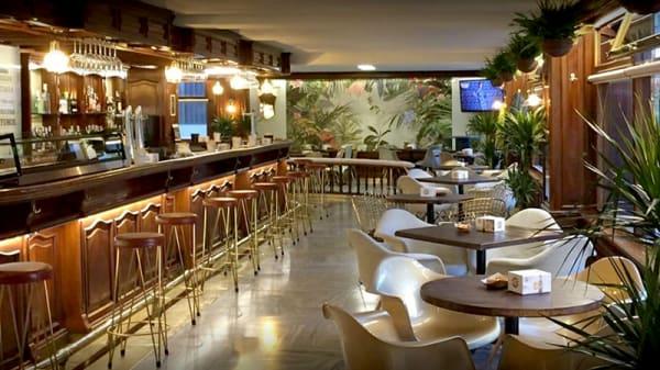Vista sala - Café La Isla, Soria