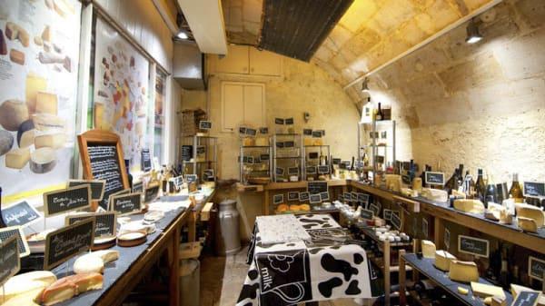 vue de la salle - Baud et Millet, Bordeaux