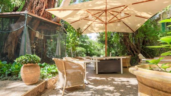 Terrasse - Un jardin en ville - Hotel WindsoR, Nice