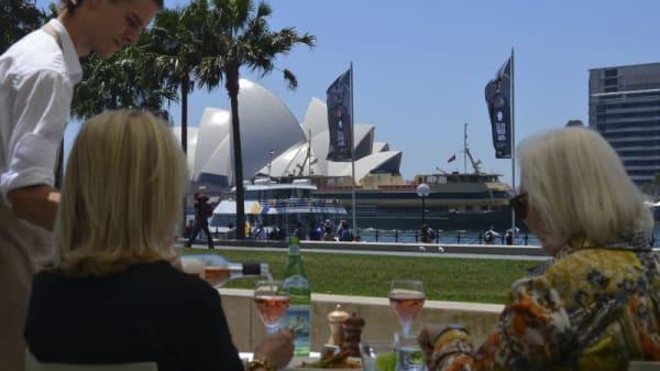 Graze MCA, The Rocks (NSW)