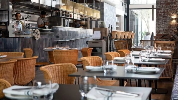 Restaurant - Young's Wine Rooms, Hawthorn East (VIC)