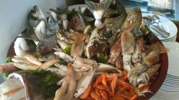 pesce fresco - Il Ritorno del Macetto, Marigliano