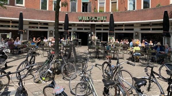 Wildschut, Amsterdam