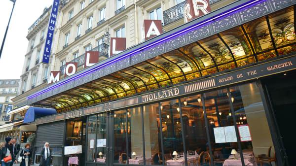 Brasserie parisienne - Brasserie Mollard, Paris