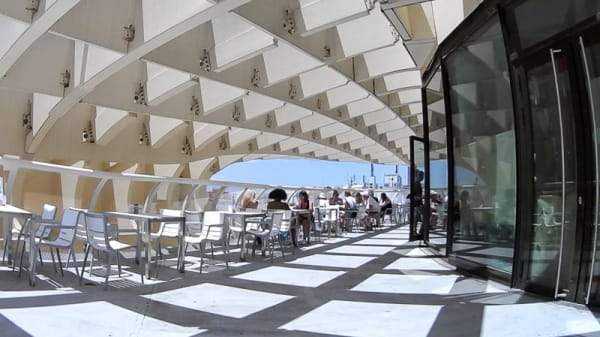 Terraza - El Balcón de las Setas, Sevilla