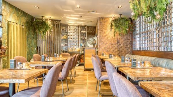 Restaurant - Brasserie Tines, Rotterdam