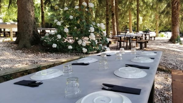 pranzo in pineta 2 - Piccolo Paradiso, Rocca Priora