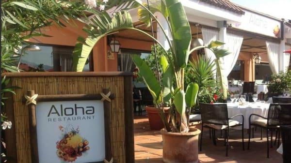 Aloha - Aloha, Nueva Andalucía