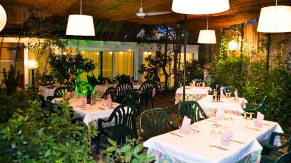 Vista sala - Trattoria Sciabolino, Pozzale-case Nuove