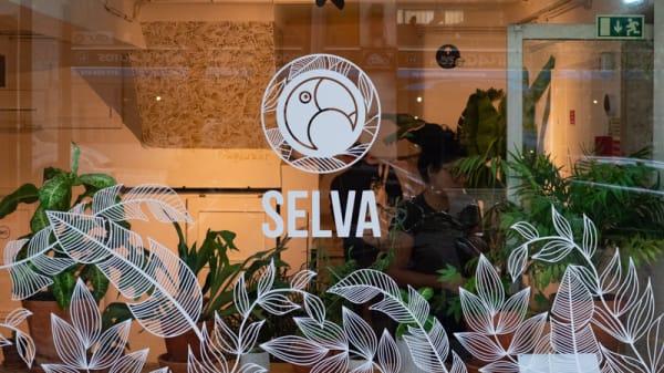 Vista da sala - Selva, Lisboa
