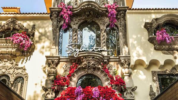 Entrada - Sylvestre (Polanco), Mexico City