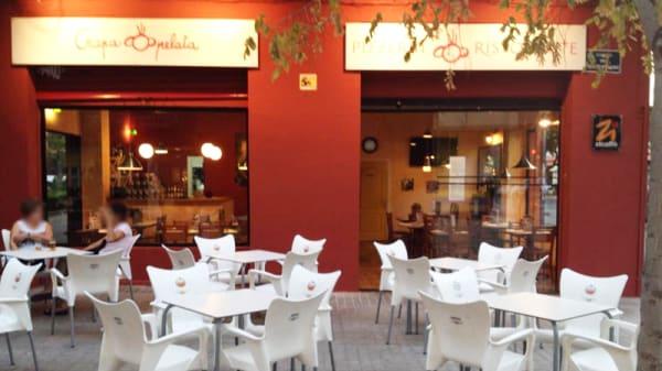 Vista terraza - Crapa Pelata Zona Facultades, Valencia