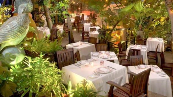 Jardín - Café des Artistes, Puerto Vallarta