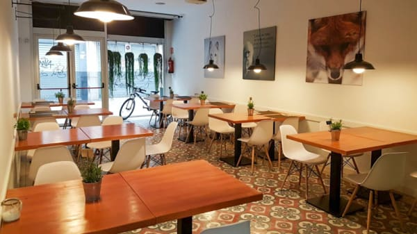 Sala - Beagle, Sabadell