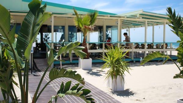 Terraza - Chiringuito Beach Club Potito, Cádiz