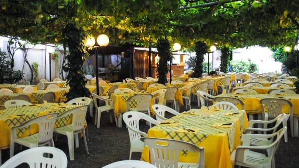 Giardino - Il  leone, Torino