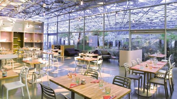 Vue de la salle - Concept, Saint-Étienne